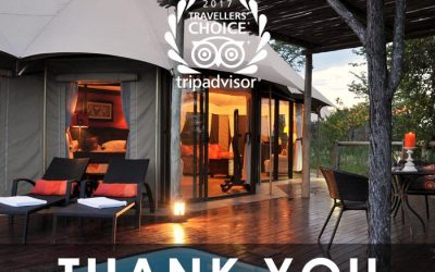 The Elephant Camp – Trip Advisor Travellers' Choice Awards in 2017